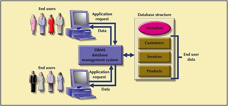 implementing a dbms system within any organization A dbms (database management system) is an application that is designed specifically to interact with the end-user, the database of information, and other software programs in order to store, manipulate, and analyze information some of the better-known dbmss in.